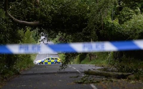 A Fallen tree on the Glenavy Road near Lisburn - Credit: Colm Lenaghan/Pacemaker