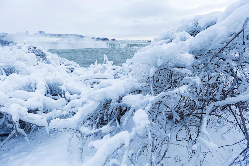 <p>Ice and snow cover branches near the brink of the Horseshoe Falls in Niagara Falls, Ontario, Canada, January 3, 2018. REUTERS/Aaron Lynett </p>