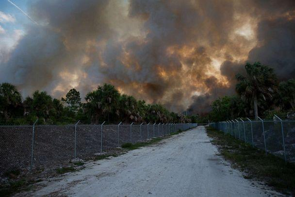PHOTO: Smoke from a brush fire inolden Gate Estates is seen from Dove Tree Lane on May 13, 2020 in Florida. (Jon Austria/Naples Daily News via USA Today )