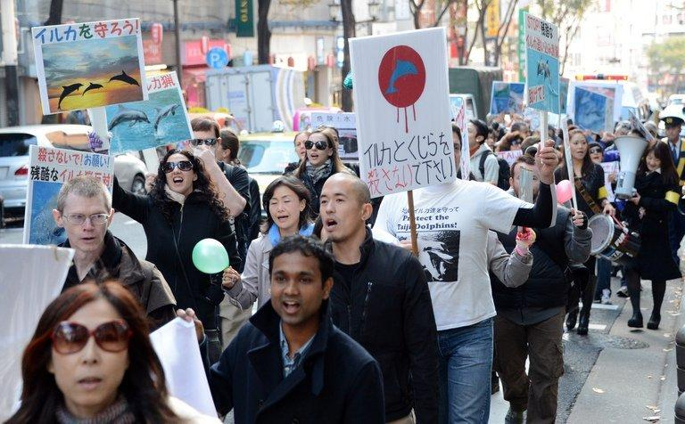 Anti-whaling and anti-dolphin-hunting demonstrators march in Tokyo, on November 24, 2012. Dozens of people marched through central Tokyo to protest dolphin and whale hunts, angering nationalists who blamed the move as discrimination against Japanese tradition