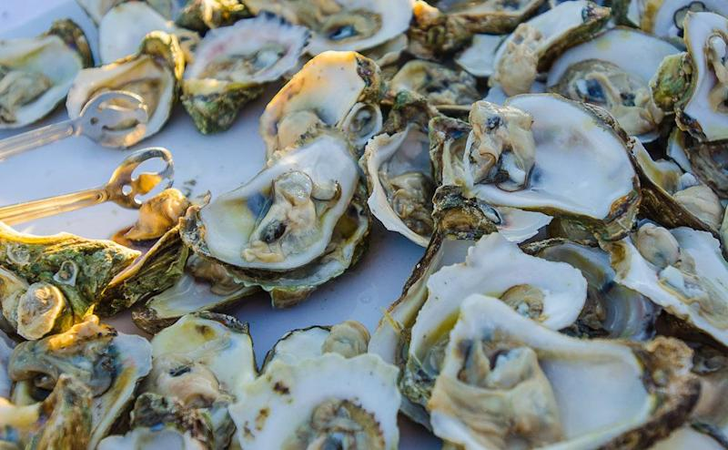 "Experts speculate that <a href=""http://news.nationalgeographic.com/news/2010/08/100806-oyster-herpes-global-warming-climate-change-science/"" target=""_blank"">warming oceans may have played a part in a strain of herpes</a> that has killed Pacific oysters in Europe in recent years."