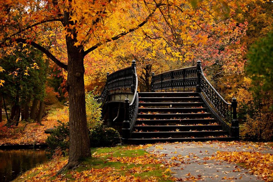 <p>You definitely won't want to miss sweater weather at the capital city of Rhode Island, where you can take a scenic stroll through Roger Williams Park, take in the rolling hillsides and enjoy autumn's best views.</p>