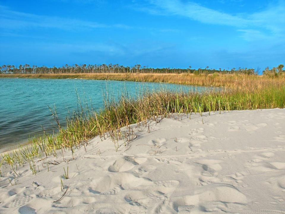 """<p><a href=""""https://www.nps.gov/guis/index.htm"""" rel=""""nofollow noopener"""" target=""""_blank"""" data-ylk=""""slk:Gulf Islands National Seashore"""" class=""""link rapid-noclick-resp""""><strong>Gulf Islands National Seashore </strong></a></p><p>Spreading out over Florida and Mississippi, the National Park Service protects historic resources along the Gulf of Mexico's barrier island, like Horn Island pictured here. To keep the land and wildlife safe, much of this land is only accessible on foot or by boat. </p>"""