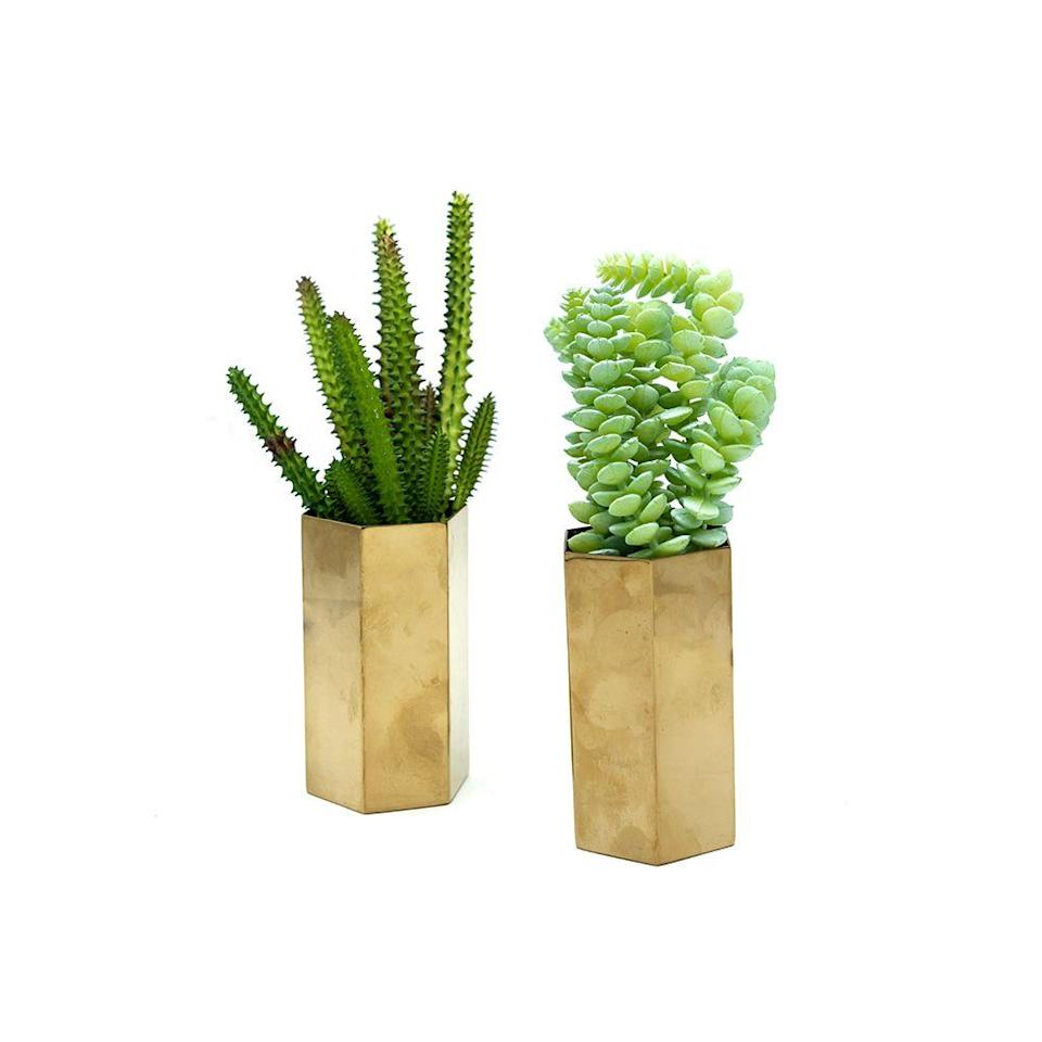 <p>Target carries some totally adorable succulent plants, but honestly, you might prefer to lay down the cash on real succulents since they're so easy to take care of anyway. </p>