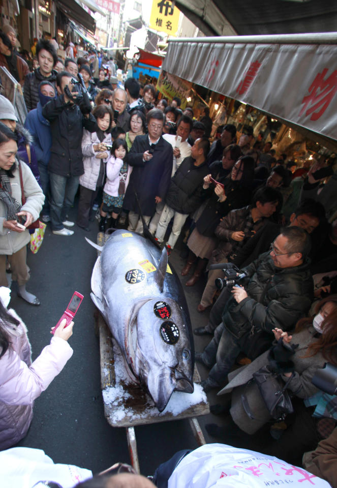 Shoppers look at a bluefin tuna in front of a restaurant near Tsukiji fish market after it fetched a record 56.49 million yen, or about $736,000, in the first auction of the year at the fish market in Tokyo Thursday, Jan. 5, 2012. The bluefin tuna was caught off Oma, in Aomori prefecture and just north of the coast that was battered by the March 11 tsunami in northeastern Japan. (AP Photo/Shizuo Kambayashi)