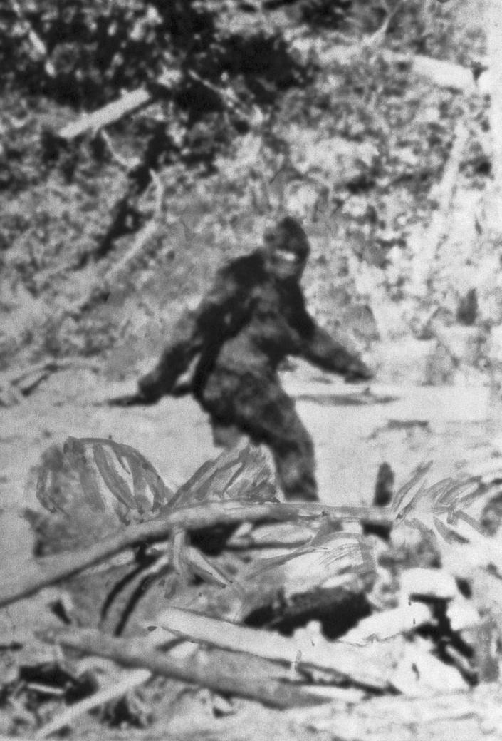 """<p><strong>Origin:</strong> Unknown </p><p><a href=""""https://www.popularmechanics.com/adventure/outdoors/a23622082/bigfoot-history/"""" rel=""""nofollow noopener"""" target=""""_blank"""" data-ylk=""""slk:Bigfoot"""" class=""""link rapid-noclick-resp"""">Bigfoot</a> is thought to be the missing link between humans and apes—we'd know for sure if only we could find one. The legend of Bigfoot comes from Native American mythology and folklore surrounding <a href=""""https://www.nationalgeographic.com/magazine/2013/04/europe-wild-men/"""" rel=""""nofollow noopener"""" target=""""_blank"""" data-ylk=""""slk:European &quot;Wild Man&quot;"""" class=""""link rapid-noclick-resp"""">European """"Wild Man""""</a> stories.</p><p>There are people who have <a href=""""https://www.popularmechanics.com/adventure/outdoors/a28401253/is-bigfoot-real/"""" rel=""""nofollow noopener"""" target=""""_blank"""" data-ylk=""""slk:dedicated their lives to finding Bigfoot"""" class=""""link rapid-noclick-resp"""">dedicated their lives to finding Bigfoot</a>, and there are even photos, like the one shown here, that offer """"proof"""" of Bigfoot's existence. In fact, Bigfoot has his very own <a href=""""https://www.popularmechanics.com/science/animals/a27758091/fbi-bigfoot-file/"""" rel=""""nofollow noopener"""" target=""""_blank"""" data-ylk=""""slk:official FBI file"""" class=""""link rapid-noclick-resp"""">official FBI file</a>, but so far, despite myriad claims from several sources across the U.S., no one has managed to definitively prove that the mighty Sasquatch exists.</p>"""