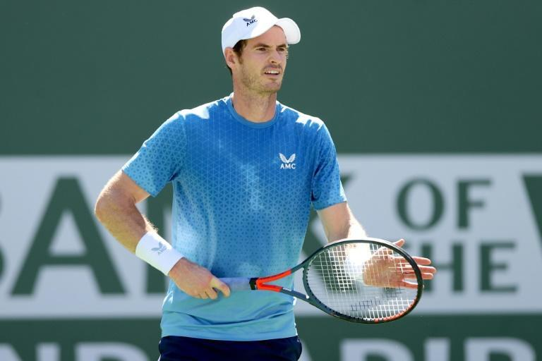 Britain's Andy Murray on the way to a second-round victory over Spain's Carlos Alcaraz at the Indian Wells ATP Masters tournament (AFP/MATTHEW STOCKMAN)
