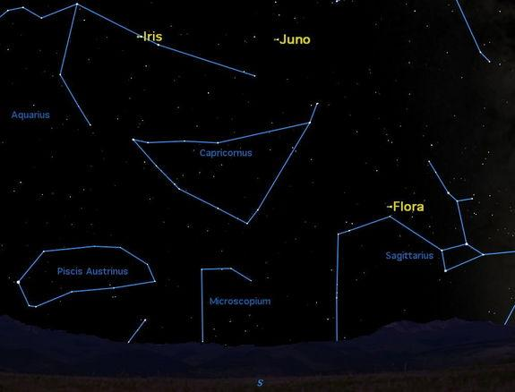 See Three Asteroids in the Night Sky This Month