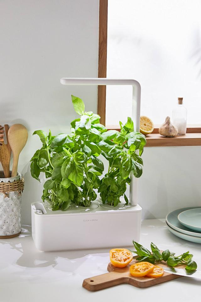 """<p>Customers rave over this <a href=""""https://www.popsugar.com/buy/Click-amp-Grow-Smart-Herb-Garden-3-Starter-Kit-474125?p_name=Click%20%26amp%3B%20Grow%20Smart%20Herb%20Garden%203%20Starter%20Kit&retailer=urbanoutfitters.com&pid=474125&price=100&evar1=yum%3Aus&evar9=46470696&evar98=https%3A%2F%2Fwww.popsugar.com%2Ffood%2Fphoto-gallery%2F46470696%2Fimage%2F46471136%2FClick-Grow-Smart-Herb-Garden-3-Starter-Kit&list1=shopping%2Curban%20outfitters%2Ckitchen%20tools%2Ckitchens%2Ckitchen%20accessories&prop13=mobile&pdata=1"""" rel=""""nofollow"""" data-shoppable-link=""""1"""" target=""""_blank"""" class=""""ga-track"""" data-ga-category=""""Related"""" data-ga-label=""""https://www.urbanoutfitters.com/shop/click-grow-smart-herb-garden-3-starter-kit?category=dinnerware&amp;color=010&amp;type=REGULAR"""" data-ga-action=""""In-Line Links"""">Click &amp; Grow Smart Herb Garden 3 Starter Kit</a> ($100).</p>"""