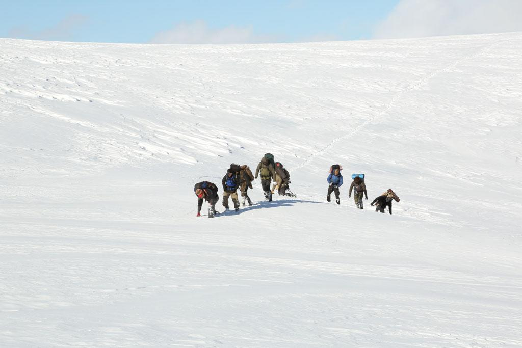 Tordrillo Mountains, Alaska, USA: Willi Prittie, Tyrell Seavey. Dallas Seavey, Brent Sass, Tyler Johnson, Austin Manelick, Matt Raney and Marty Raney trekking through the snow.