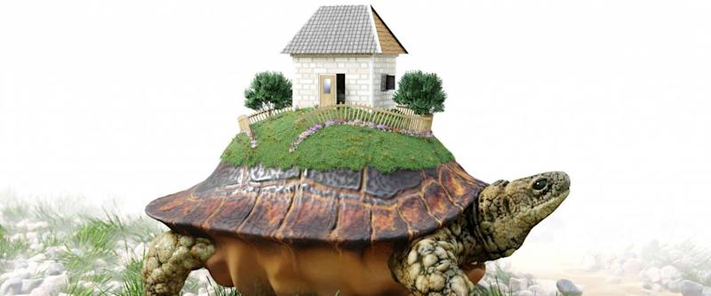 Turtle with toy house from paper real estate business concept photo