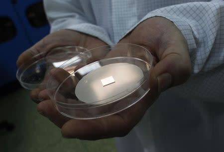 File photograph of a senior technologist holding a piece of silicon carbide disk covered with a layer of graphene
