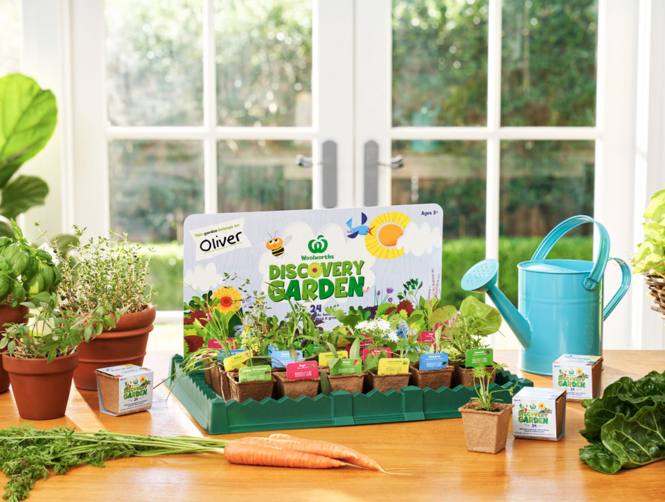Promo photo showing discovery garden seedlings that have sprouted.