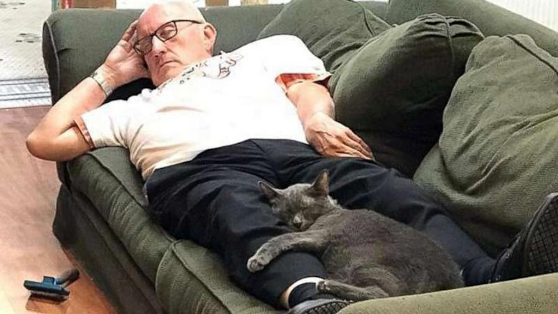 Viral post of volunteer napping with shelter cats brings in enough funds to run sanctuary for a year