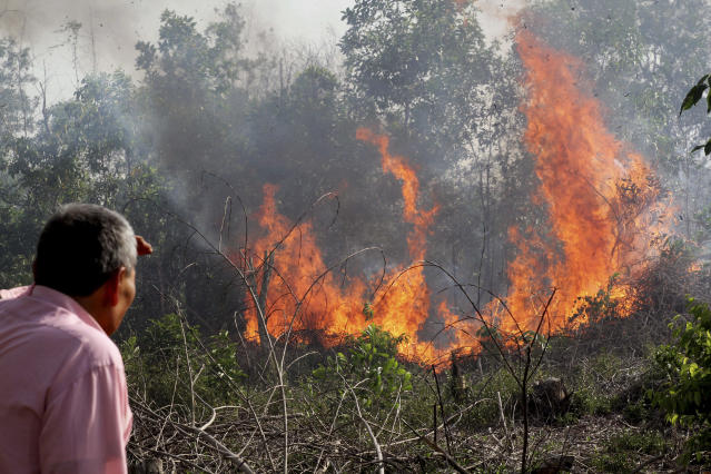 """A man looks at a fire as it burns through a peatland forest in Rumbai Pesisir, Riau province, Indonesia, Thursday, June 20, 2013. Smog fueled by forest fires in Indonesia has caused Singapore's main measure for air pollution to surge to an all-time high Thursday afternoon and breached a """"hazardous"""" classification that can aggravate respiratory ailments. Nearby Malaysia closed 200 schools and banned open burning in some areas. (AP Photo/Rony Muharrman)"""