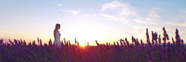 Woman in white dress walking through lavender fields. Sunrise in Provence, France