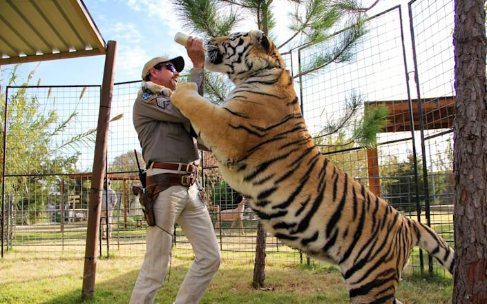 """""""Tiger King"""" told the story of private US zoos and their eccentric owners - NETFLIX"""