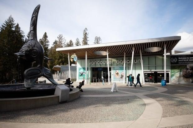 The Vancouver Aquarium. pictured on Feb. 24, 2020, has been sold from Ocean Wise Conservation Association toHerschend Enterprises, a privately-owned tourism company based in the U.S. (Maggie MacPherson/CBC - image credit)