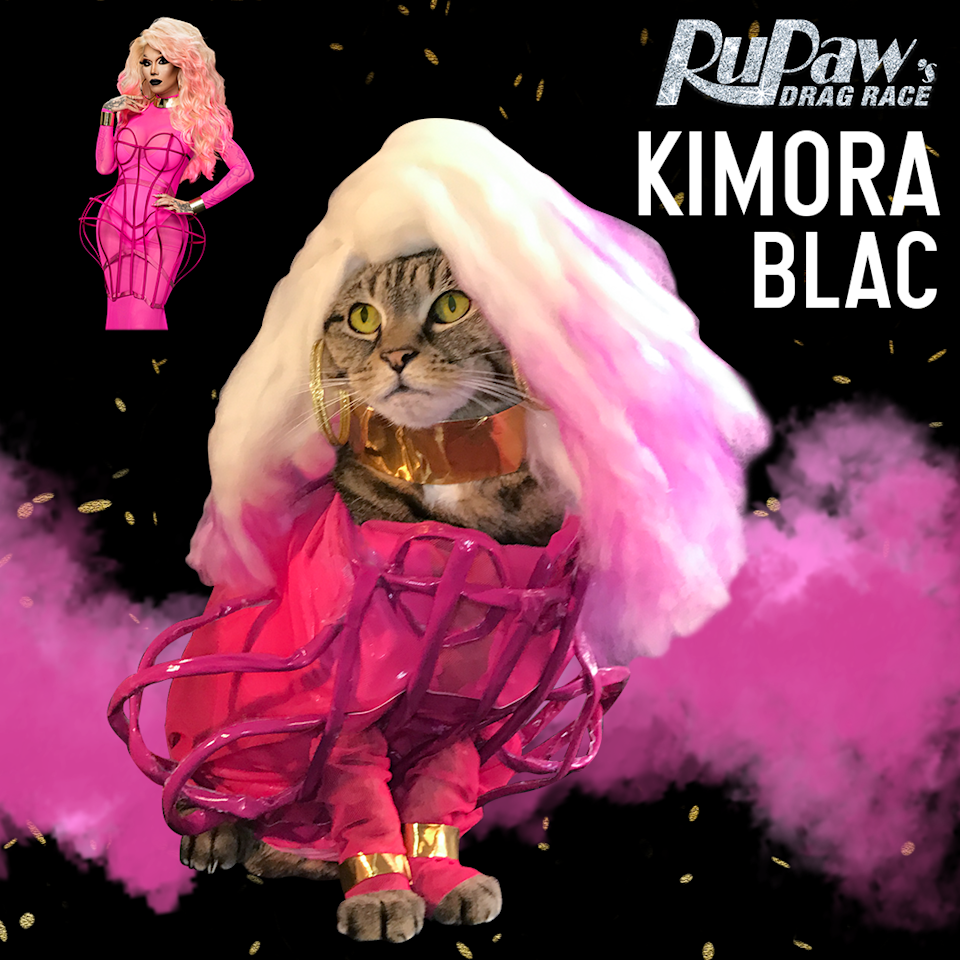 "<p>""Everything you see on <a href=""http://www.RupawsDragRace.com"" rel=""nofollow noopener"" target=""_blank"" data-ylk=""slk:RuPaw's Drag Race"" class=""link rapid-noclick-resp"">RuPaw's Drag Race</a> is handmade kitty couture & wigs created by John and myself. Much like the real queens in the workroom, there is a lot of cutting, sewing, padding and hot gluing! We source all of our fabrics and yarns from the Fashion District here in N.Y.C. It takes hours, days even to create one tiny look, but we laugh and do it with love,"" Rogers said about the blood, sweat and sequins it takes to make this account. </p>"