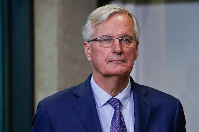 The last-minute bid by Brexit negotiator Michel Barnier (pictured Feburary 2019) comes just days before British Parliament is due to vote on a withdrawal deal agreed between the two sides, in which the fate of the Irish border is seen as a key issue