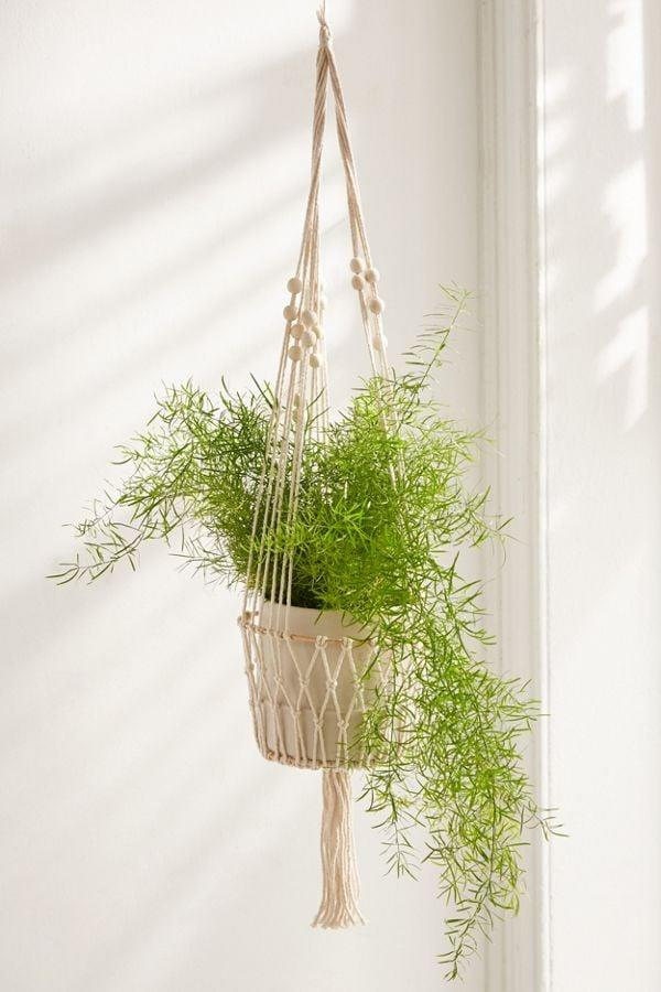 """<p>This <a href=""""https://www.popsugar.com/buy/Ira-Hanging-Planter-494216?p_name=Ira%20Hanging%20Planter&retailer=urbanoutfitters.com&pid=494216&price=18&evar1=tres%3Auk&evar9=25802428&evar98=https%3A%2F%2Fwww.popsugar.com%2Flove%2Fphoto-gallery%2F25802428%2Fimage%2F46678505%2FIra-Hanging-Planter&list1=gift%20guide%2Cgifts%20for%20women&prop13=api&pdata=1"""" rel=""""nofollow"""" data-shoppable-link=""""1"""" target=""""_blank"""" class=""""ga-track"""" data-ga-category=""""Related"""" data-ga-label=""""https://www.urbanoutfitters.com/shop/ira-hanging-planter?category=best-home-decor&amp;color=011"""" data-ga-action=""""In-Line Links"""">Ira Hanging Planter</a> ($18) will draw attention to her favorite plants.</p>"""