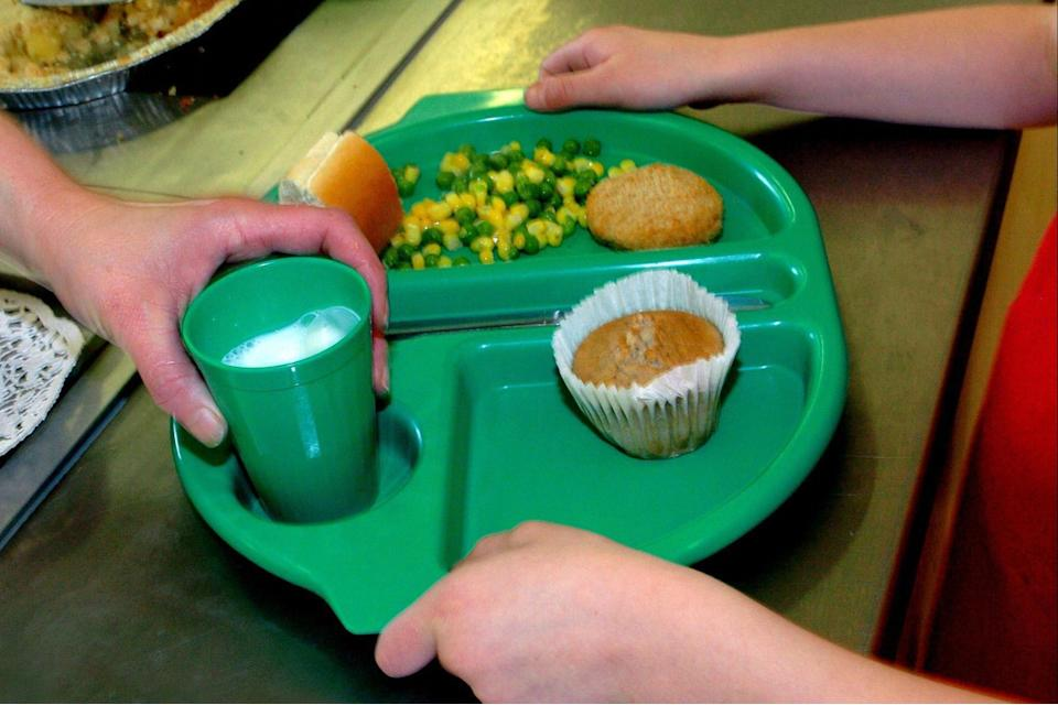 <p>Chartwells provides meal boxes to parents of children eligible for free school meals (PA)</p> (PA)