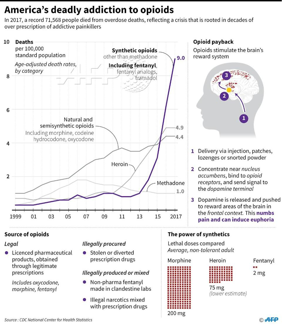 A number of factors have led to a full-blown opioid epidemic in the U.S. (Graphic: AFP)