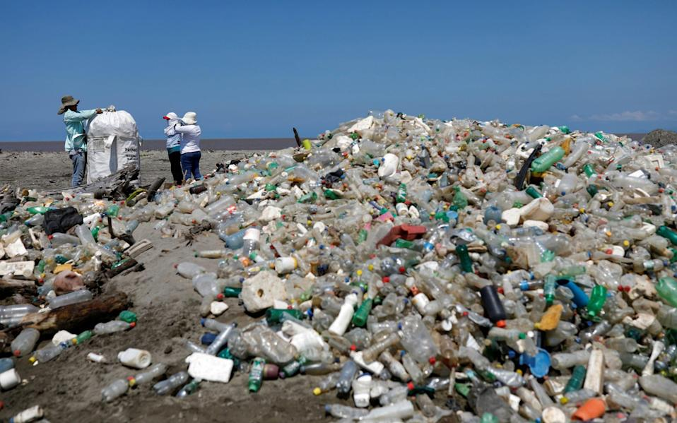 The enhanced protein comprises two enzymes produced by a type of bacterium that feeds on plastic bottles - Reuters