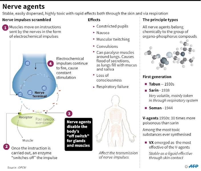 Facts on nerve agents (AFP Photo/John SAEKI)