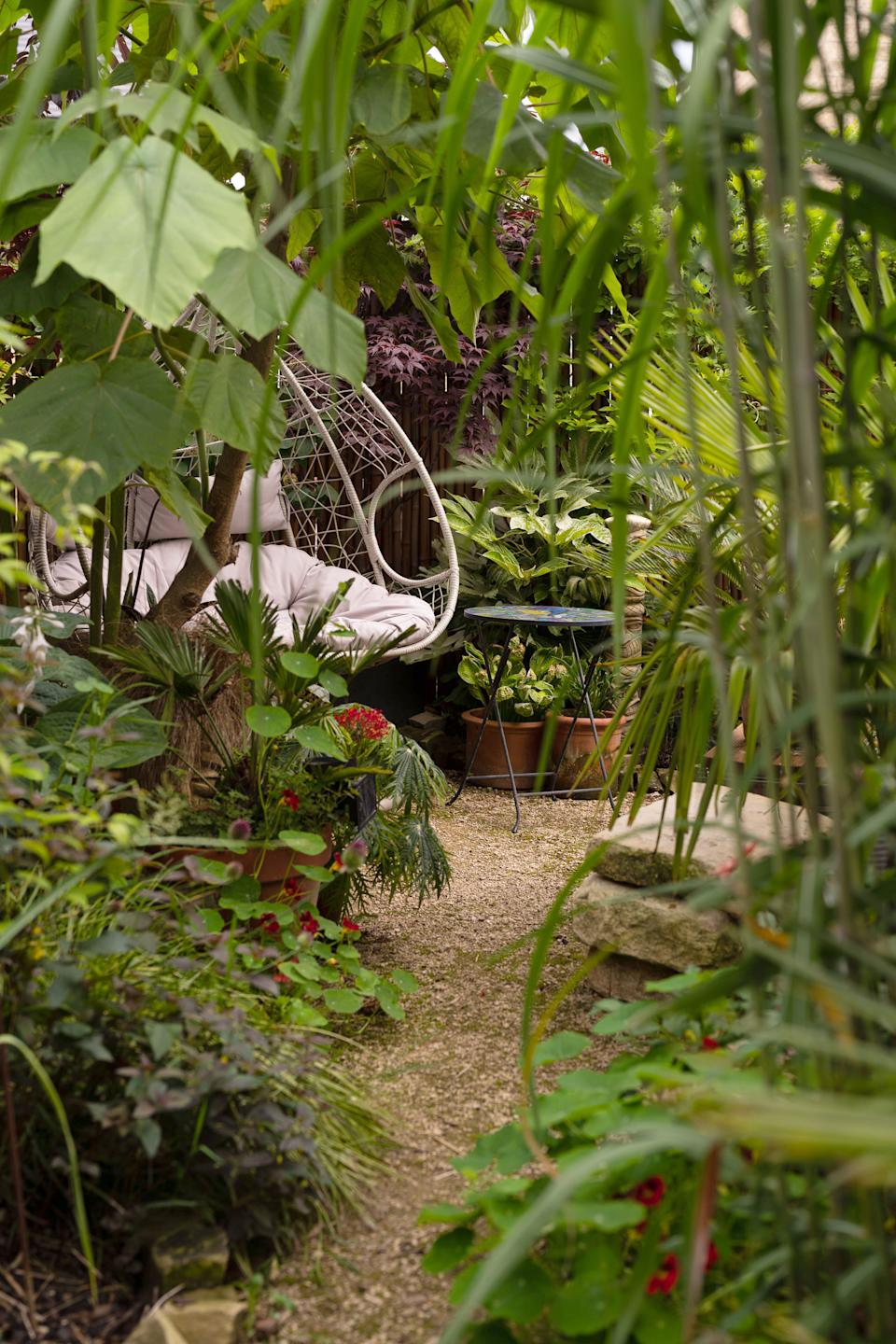 The garden is full of unusual tropical plants sourced from specialists.  (Caters)