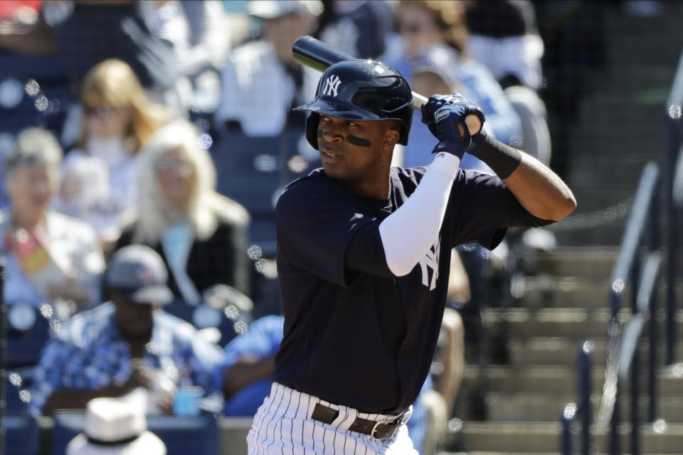 New York Yankees' Rosell Herrera during the fifth inning of a spring training baseball game against the Detroit Tigers Saturday, Feb. 29, 2020, in Tampa, Fla. (AP Photo/Frank Franklin II)