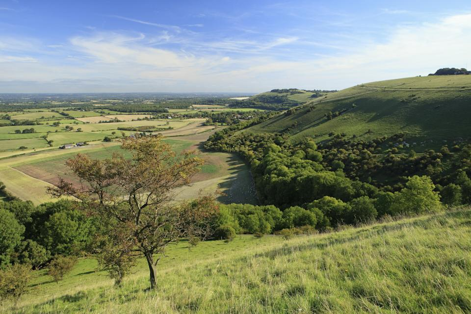 The landscape of the South Downs (John Miller/National Trust Images/PA)