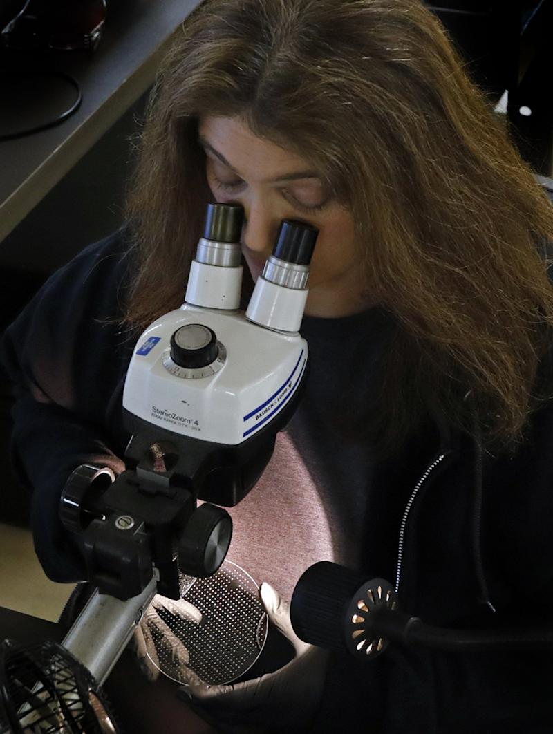 Tammy Cail, a quality inspector with Bullen Ultrasonics in Eaton, Ohio, does a visual inspection of a glass wafer that will be used in the production of a pressure sensor March 25. Finished sensors are used in ventilators, which are in high demand as the coronavirus spreads.