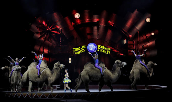 """Ringling Bros. and Barnum & Bailey performers ride camels during a performance Saturday, Jan. 14, 2017, in Orlando, Fla. The Ringling Bros. and Barnum & Bailey Circus will end the """"The Greatest Show on Earth"""" in May, following a 146-year run of performances. Kenneth Feld, the chairman and CEO of Feld Entertainment, which owns the circus, told The Associated Press, declining attendance combined with high operating costs are among the reasons for closing. (AP Photo/Chris O'Meara)"""