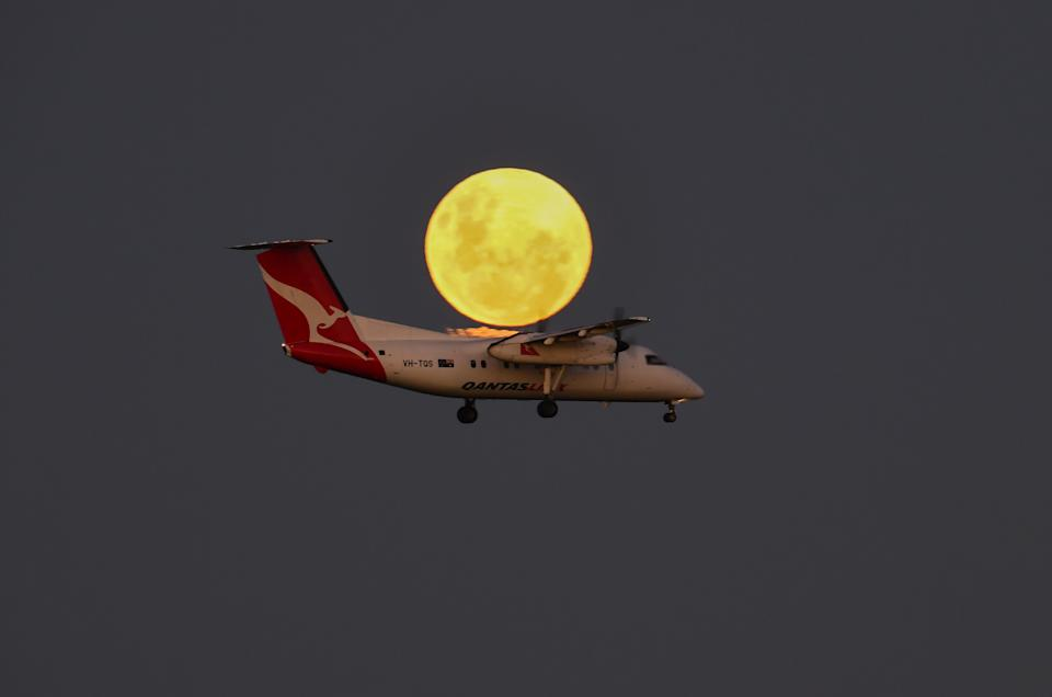 SYDNEY, AUSTRALIA - MAY 26: A Qantas plane before landing at Sydney Airport as a super blood moon rises on May 26, 2021 in Sydney, Australia. It is the first total lunar eclipse in more than two years, which coincides with a supermoon.  A super moon is a name given to a full (or new) moon that occurs when the moon is in perigee - or closest to the earth - and it is the moon's proximity to earth that results in its brighter and bigger appearance. (Photo by James D. Morgan/Getty Images)