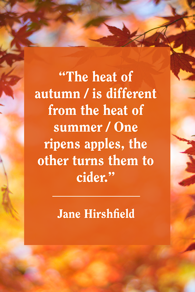 """<p>""""The heat of autumn / is different from the heat of summer / One ripens apples, the other turns them to cider,"""" Hirshfield <a href=""""https://www.poetryfoundation.org/poems/50992/the-heat-of-autumn-56d22e71da93a"""" target=""""_blank"""">wrote in her poem, """"The Heat of Autumn.""""</a></p>"""