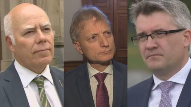 Green Party Leader David Coon, Liberal Leader Roger Melanson, and People's Alliance Leader Kris Austin responded to the auditor general's report on this week's political panel.