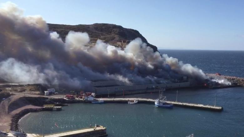 Plant workers optimistic as new Bay de Verde fish plant tests production 1 year after fire