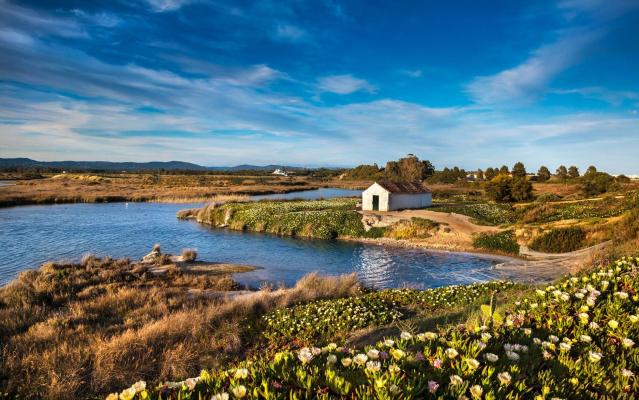 Abigail takes her family to explore the Ria Formosa Nature Reserve - Getty
