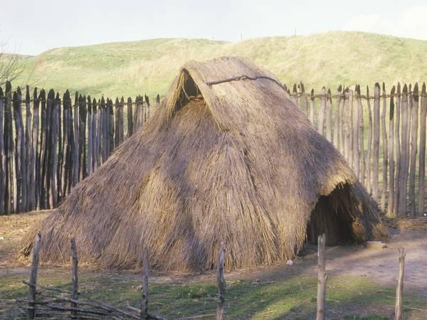As many 50 million Native Americans — 90 percent of the pre-Columbian population — lost their lives between 1492 and 1890.