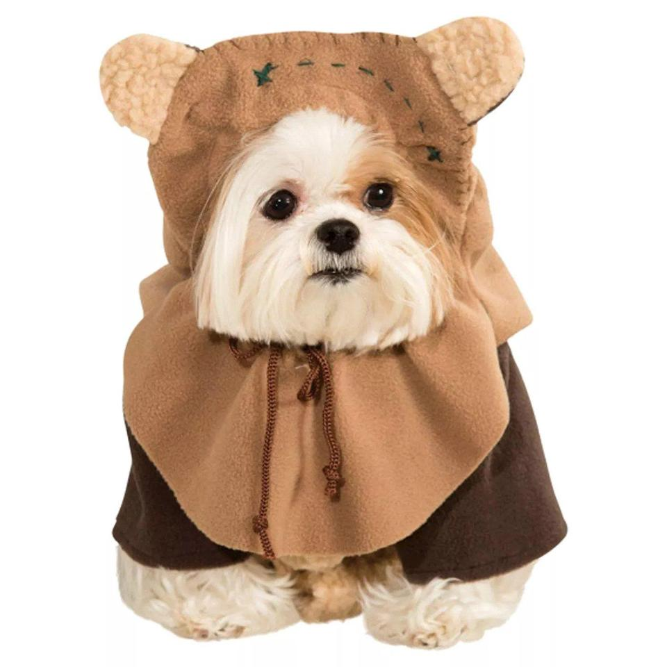 "<p>Edging out the AT-AT Walker for the most popular <em>Star Wars</em> costume of 2020 is this iconic critter. </p> <p><strong>Buy it!</strong> Ewok Dog and Cat Costume, $24.99; <a href=""https://goto.target.com/c/249354/81938/2092?subId1=PEOTheTopDogHalloweenCostumesof2020BasedonGoogleSearcheskbender1271PetGal12355244202010I&u=https%3A%2F%2Fwww.target.com%2Fp%2Fstar-wars-ewok-dog-and-cat-costume-brown%2F-%2FA-16284683"" rel=""nofollow noopener"" target=""_blank"" data-ylk=""slk:Target.com"" class=""link rapid-noclick-resp"">Target.com</a></p>"