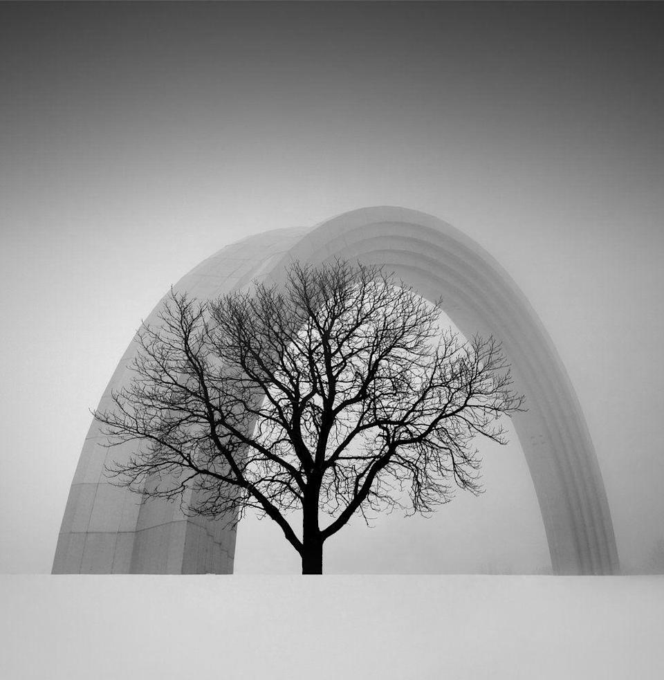 <p>A tree is silhouetted in front of a 30-foot titanium arch. (Oleksandr Nesterovskyi) </p>