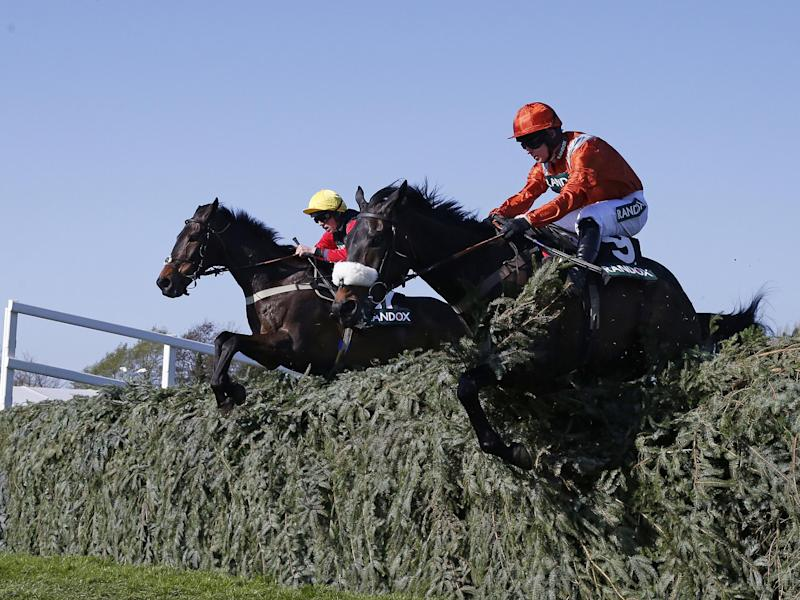 50-1 shot Ultragold won the Randox Health Topham Chase: Getty
