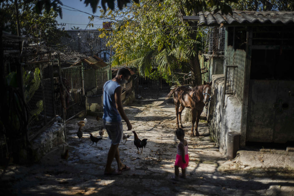 """A horse that used to pull tourists in a carriage stands outside with its owner Rigoberto Romero in Havana, Cuba, Feb. 24, 2021. """"For everyone, Biden is hope,"""" said Romero, who used to make a living by taking tourists around the capital by horse-drawn carriage but now just takes care of his horses at home while tourism is down. (AP Photo/Ramon Espinosa)"""