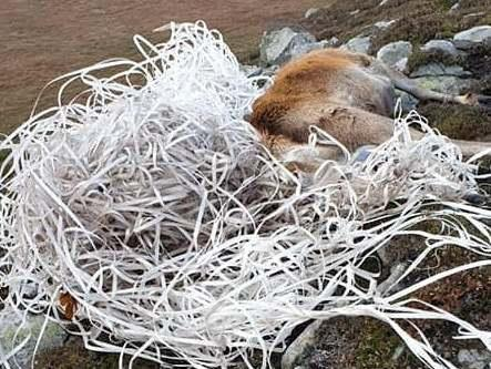 Mr Muir said plastic pollution on Jura had been getting worse over the last few years (Wild Side of Jura /SWNS.COM)
