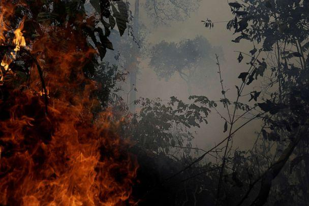 PHOTO: A fire burns a tract of Amazon jungle as it is cleared by loggers and farmers near Porto Velho, Brazil, August 27, 2019. (Ricardo Moraes/Reuters, FILE)