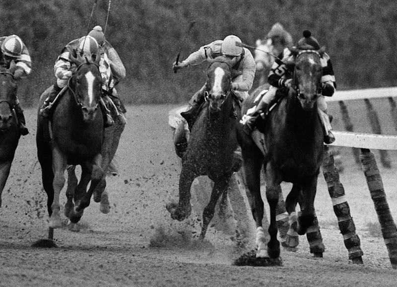 FILE - In this June 9, 1979, file photo, Coastal, second from right, ridden by Ruben Hernandez, makes the move to pass Spectacular Bid (5), with Ronnie Franklin, on the final turn during the Belmont Stakes horse race in Elmont, N.Y. Spectacular Bid, trying for the Triple Crown, weakened and finished third in the race. (AP Photo/Ron Frehm, File)