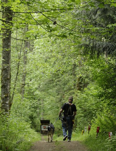 U.S. Army Spc. Mike Ballard walks with Apollo, his service dog, during an archery shooting session, Friday, May 17, 2012, in Puyallup, Wash. Ballard says his dog helps him get through the worst symptoms of the post-traumatic stress disorder that is a remnant of an explosion in Afghanistan that ended his career as an Army medic. (AP Photo/Ted S. Warren)