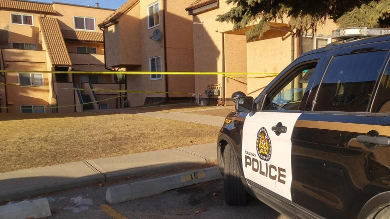 Man accused of killing younger brother in argument in northeast Calgary