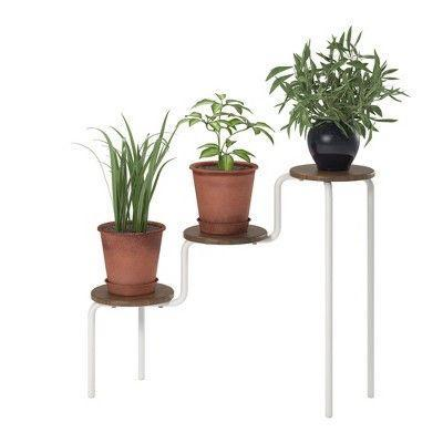 """<p><strong>Novogratz</strong></p><p>target.com</p><p><strong>$69.99</strong></p><p><a href=""""https://www.target.com/p/webster-3-tier-plant-stand-walnut-novogratz/-/A-79196070"""" rel=""""nofollow noopener"""" target=""""_blank"""" data-ylk=""""slk:Shop Now"""" class=""""link rapid-noclick-resp"""">Shop Now</a></p><p>This tri-level plant holder is a chic, easy way to show off your greenery—it's like an Olympics medal podium for your plants. </p>"""
